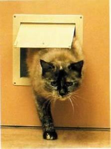 Serrurier Le Cannet : chati re pour petits animaux domestiques passage 159x160 ~ Premium-room.com Idées de Décoration