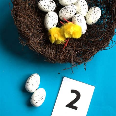spring themed maths birds nest counting addition