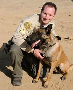 'Trailing canines' join the L.A. Sheriff's squad ...