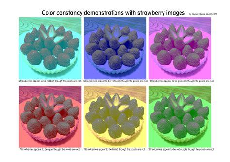 color constancy 6