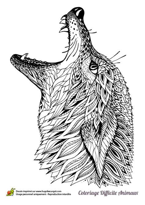jeux de vrai cuisine dessin à colorier d 39 une tête de loup hugolescargot com