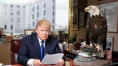 Trump Donald Eagle Desk Office Aquila His