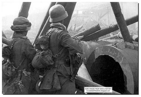 the siege of stalingrad gallimaufry lest we forget battle of stalingrad