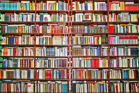 on the shelf book the books we keep on a shelf lynne meredith golodner