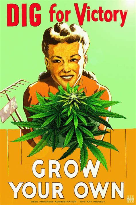 Pot Meme Grow Your Own Marijuana Memes Inconvenient History