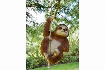 Sloth Climbing Transparent Sn