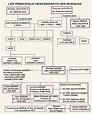 Borgia ailesi - Vikipedi