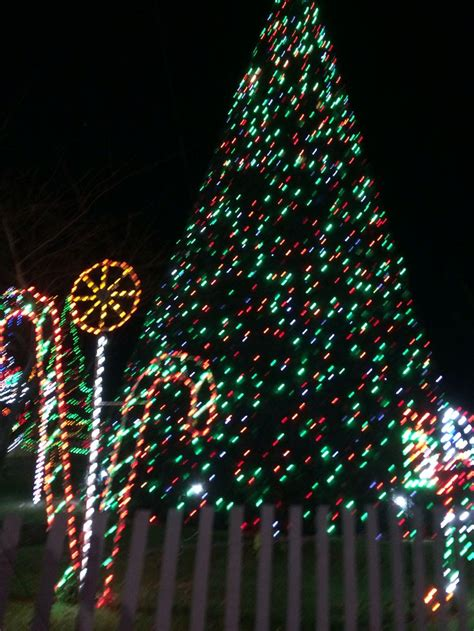 winter festival of lights city md my home away