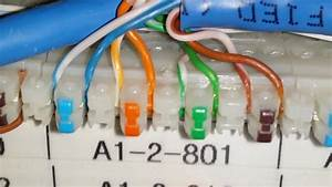 Cat5 Punch Block Wiring Diagram Get Free Image About 66 Block Bridge Clips Cat6 Faceplate Wiring