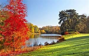Autumn park, lake, trees, leaves, nature scenery wallpaper ...