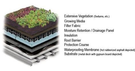 Decking Drainage by Extensive Vegetative Roofs Wbdg Whole Building Design Guide