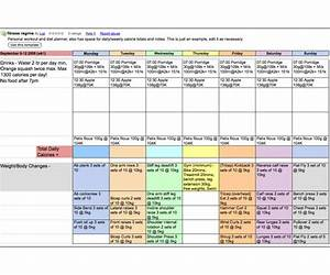 food diary template google docs diabetes 2 dizzy spells With meal plan template google docs