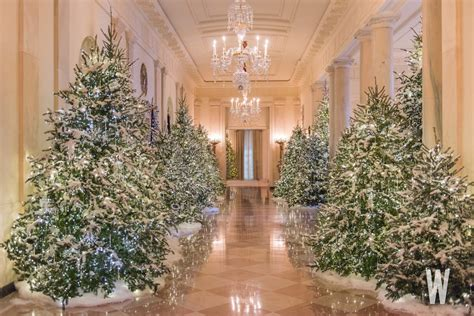 photos the 2017 white house christmas decorations