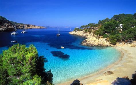The Local Guide To Authentic Mallorca Olivers Travels