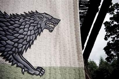 Banner Thrones Stark Direwolves Direwolf Robb Fanpop
