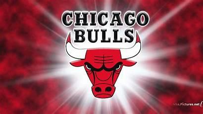 Bull Bulls Logos Da