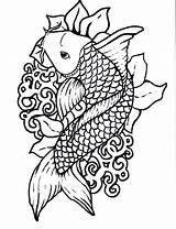 Koi Fish Coloring Sheet Pages sketch template