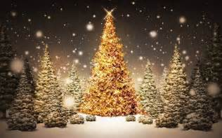 download christmas tree in forest wallpaper hd free uploaded by mansi wallpaper id 70358