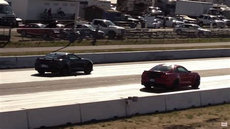 Gt350 Vs Camaro by Stock Camaro Zl1 And Mustang Shelby Gt350 Battle At The