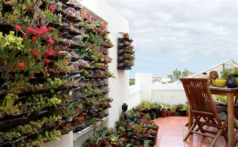 Owngrown Ecofriendly And Sustainable Urban Gardens