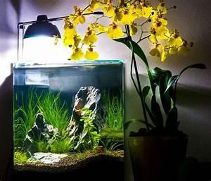 L Form Aquarium : 16l eheim aquarium pinterest aquarium ~ Sanjose-hotels-ca.com Haus und Dekorationen