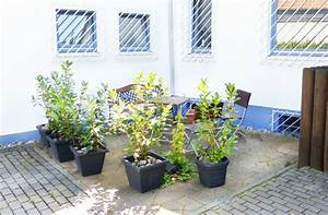 Haus Mieten Mörfelden Walldorf : privatzimmer und ferienwohnungen in frankfurt und m rfelden walldorf ~ Eleganceandgraceweddings.com Haus und Dekorationen