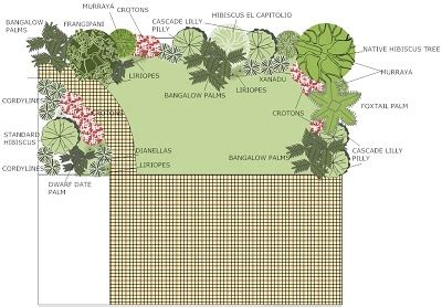 planning a tropical garden adelaide landscape design adelaide landscaping garden ideas plans