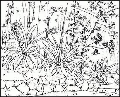 Nature Coloring Pages Scenes Printable Drawing Getdrawings