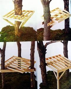 Comment Creuser Un Tronc D Arbre : tuto construire une cabane dans les arbres guide m thodes ~ Melissatoandfro.com Idées de Décoration