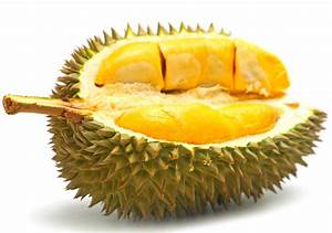 What Good Inside Durian Fruit? 2msia com