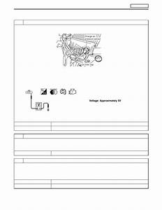 Nissan Terrano R20e  Manual