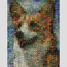 Mazaika  The Photo Mosaic Program Make A Photo Mosaic From Your Own Photos