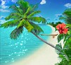 Image result for Kindle Fire 10 Wallpaper Free