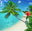 Image result for Beach Backgrounds for Kindle Fire