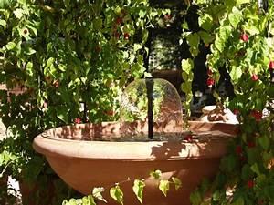 Pflanzen Für Pergola : pflanzen als sonnenschutz f r terrasse und balkon energie fachberater ~ Sanjose-hotels-ca.com Haus und Dekorationen