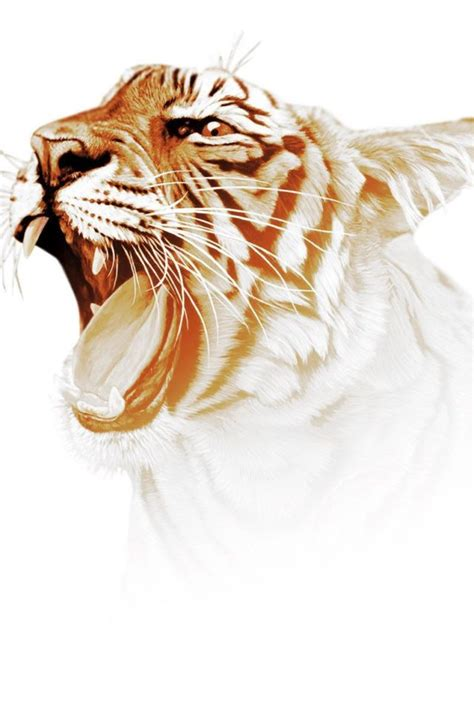 Digital Tiger Wallpaper by Digital Tiger Hd Wallpaper Hd Wallpapers