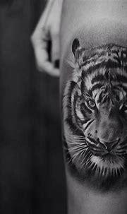 Black and Grey Tiger Portrait | Tiger tattoo design, Tiger ...