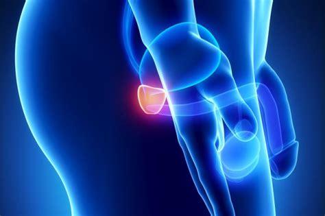 prostate cancer targeted  ultrasound  transform
