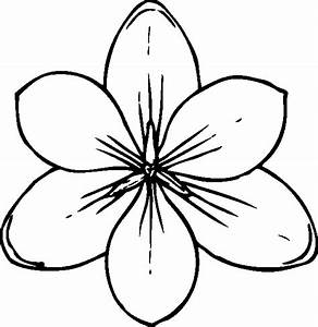 Coloring Page Butterfly Flower