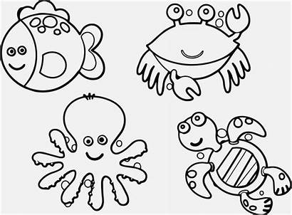 Pages Coloring Weird Printable Animal Colouring Getcolorings
