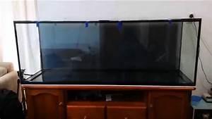Fish Tank Background 150 Gallon New Aquarium 2015 Youtube