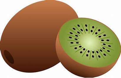 Fruit Clip Kiwi Clipart Cliparts Fruits Cartoon