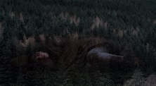 Under the Skin • Movie Review