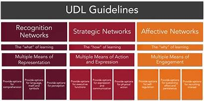Udl Universal Learning Guidelines Graphic Representation Access