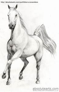 Pencil Drawings: Trojan Horse Pencil Drawings