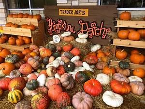 Trader, Joe, U0026, 39, S, Are, The, Pumpkin, Pros