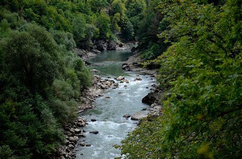 stock photo  brook creek nature