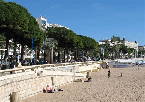 Cannes destination, the official site of the tourist office, invites you to discover through its various sections the main assets of the town to make your stay most enjoyable and special. Tour de ville de Cannes - Wikimedia Commons