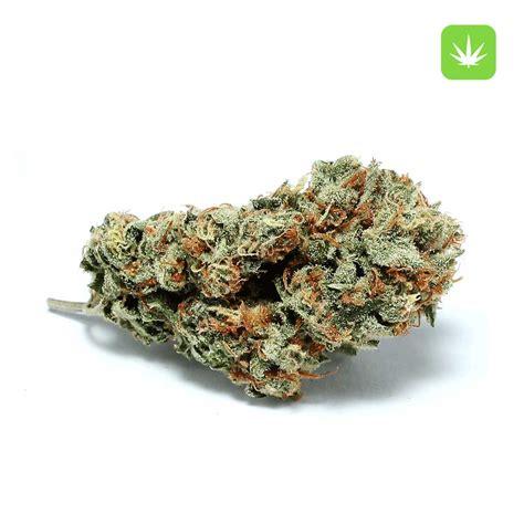 lemon haze super cannabis hybrid nugs sativa california indica