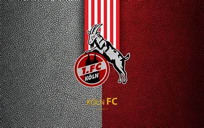 Fc Koln Football Club Bundesliga Wallpapers German